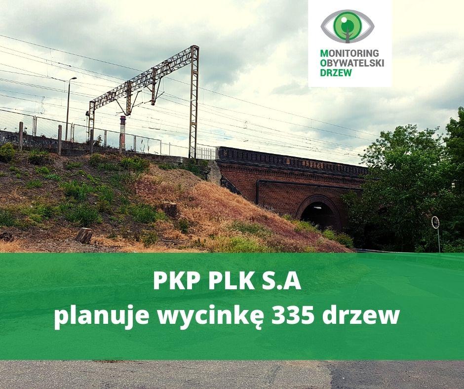 PKP PLK S.A. wnioskuje o wycinkę w Bydgoszczy