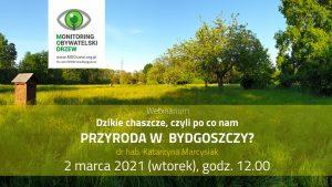 Webinarium o dzikiej przyrodzie Bydgoszczy
