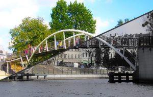 Co o drzewach w Bydgoszczy mówi nam Raport o stanie miasta za 2020 rok?